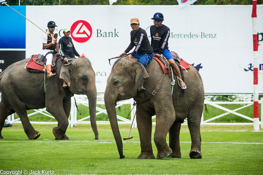 "28 AUGUST 2013 - HUA HIN, PRACHUAP KHIRI KHAN, THAILAND:  Elephants, mahouts and polo players warm up at the King's Cup Elephant Polo Tournament in Hua Hin, Thailand. The tournament's primary sponsor in Anantara Resorts and the tournament is hosted by Anantara Hua Hin. This is the 12th year for the King's Cup Elephant Polo Tournament. The sport of elephant polo started in Nepal in 1982. Proceeds from the King's Cup tournament goes to help rehabilitate elephants rescued from abuse. Each team has three players and three elephants. Matches take place on a pitch (field) 80 meters by 48 meters using standard polo balls. The game is divided into two 7 minute ""chukkas"" or halves. There are 16 teams in this year's tournament, including one team of transgendered ""ladyboys.""     PHOTO BY JACK KURTZ"
