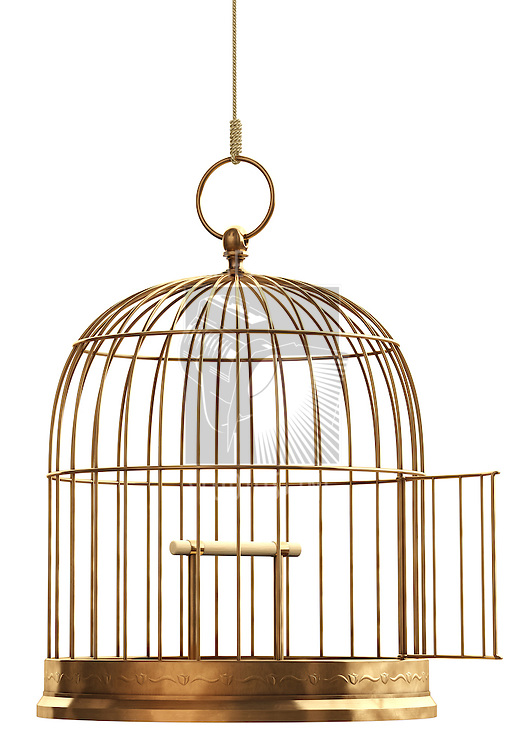 An open brass birdcage hanging on a string over white