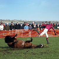 Fastandloose sent his jockey flying at the 2007 Bellhabour Point to Point on Sunday.<br /><br /><br /><br />Photograph by Yvonne Vaughan.