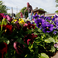Thomas Wells | BUY at PHOTOS.DJOURNAL.COM<br /> Jim Epps helps some of the Lee County Master gardeners change the beds over from vegetable to flowers at the Community Garden on South Spring Street iin Tupelo. The group is getting the graden ready for this year's annual Celebration of Gardens being held on May 14th from 9-12.