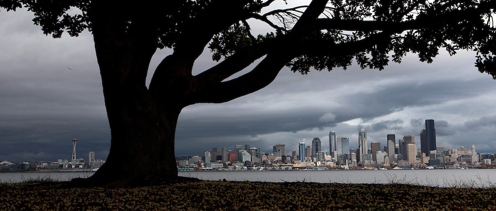 The rain took a break, although dark storm clouds linger over downtown Seattle, seen from W. Seattle's Don Armeni Park.
