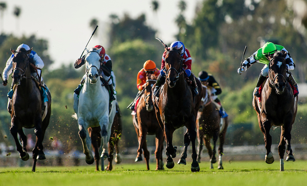 Winning Prize, ridden by Corey Nakatani wins the Franke E. Kilroe Mile Stakes (G!) at Santa Anita Park on March 8, 2014 in Arcadia, California. (Photo by Evers/Eclipse Sportswire)