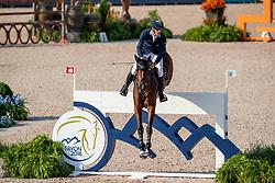 VON ECKERMANN Henrik (SWE), Toveks Mary Lou<br /> Tryon - FEI World Equestrian Games™ 2018<br /> 2. Qualifikation Teamwertung 1. Runde<br /> 20. September 2018<br /> © www.sportfotos-lafrentz.de/Stefan Lafrentz