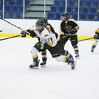 1st year forward Lilla Carpenter-Boesch (17) of the Regina Cougars in action during the Women's Hockey home game on January 7 at Co-operators arena. Credit: Arthur Ward/Arthur Images