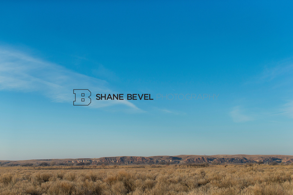12/8/12 10:05:16 AM -- Quail hunting on the Cimarron Hills WMA in western Oklahoma. <br /> <br /> Photo by Shane Bevel