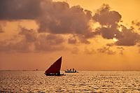 Tanzanie, archipel de Zanzibar, île de Unguja (Zanzibar), village de Kizimkazi  // Tanzania, Zanzibar island, Unguja, Kizimkazi village