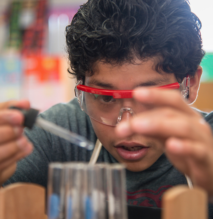 Biology students work on a project at Reagan High School, September 16, 2014.