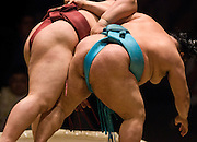 Kisenosato (left) and Toyonoshima compete in the fourth round of Day 2 of Grand Sumo Tournament Los Angeles 2008, Los Angeles Sports Arena, Los Angeles, California