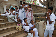 Pilgrims in prayer at the sacred Bodhi Tree, the oldest documented living tree in the world, and said to be a sapling from the original Bodhi tree in Bodh Gaya, India. Anuradhapura.
