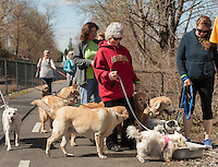 """Cathy Reitz' dog """"princess"""" didn't paid no never mind to the dogs lined up behind her at the watering trough at the end of the BOW WOW Fest walk on the Wow Trail Saturday morning.  (Karen Bobotas/for the Laconia Daily Sun)"""