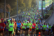 Tel Aviv Marathon 28/02/14 Israel<br /> photographer - Gilad Kavalerchik<br /> <br />    www.Giladka.com