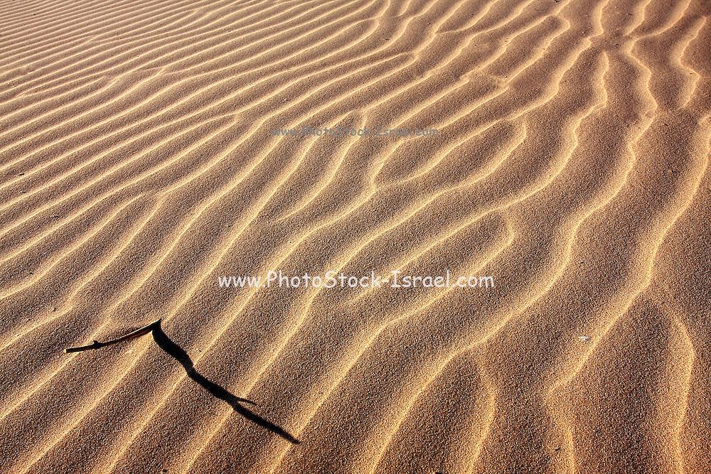 wind patterns Sand Dune