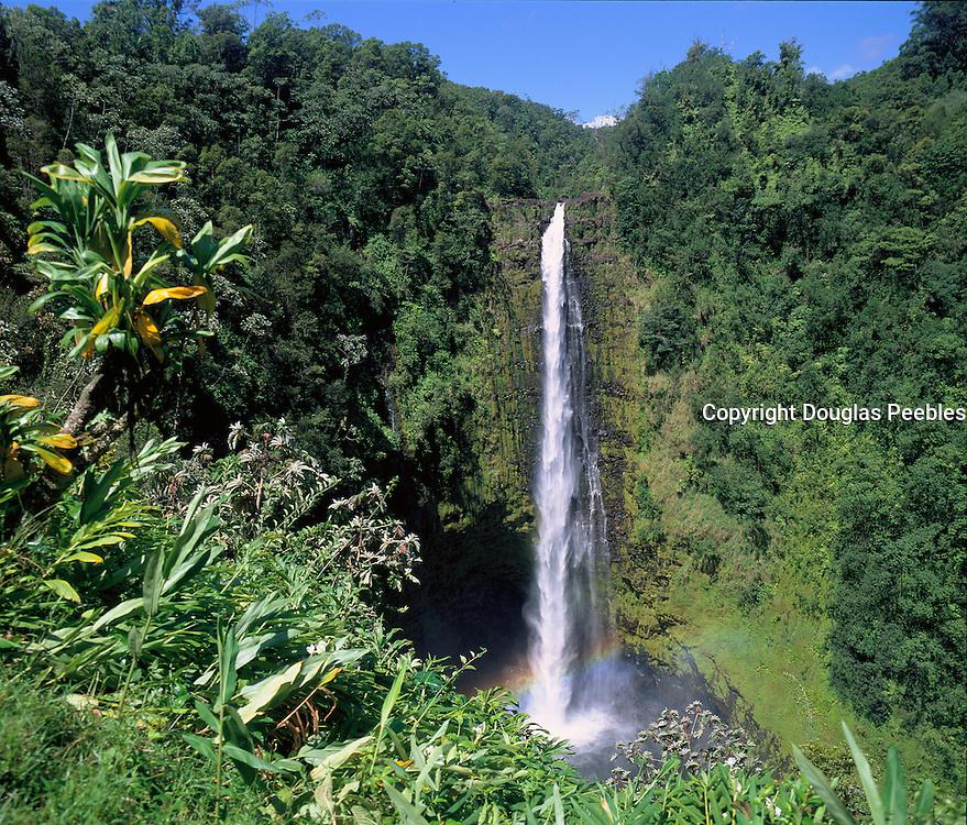 Akaka Falls, Hamakua Coast, Island of Hawaii, Hawaii, USA<br />