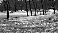 Melting snow at North Meadow in Central Park