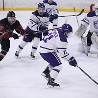 Women's Ice Hockey: St. Catherine University Wildcats vs. Bethel University (Minnesota) Royals