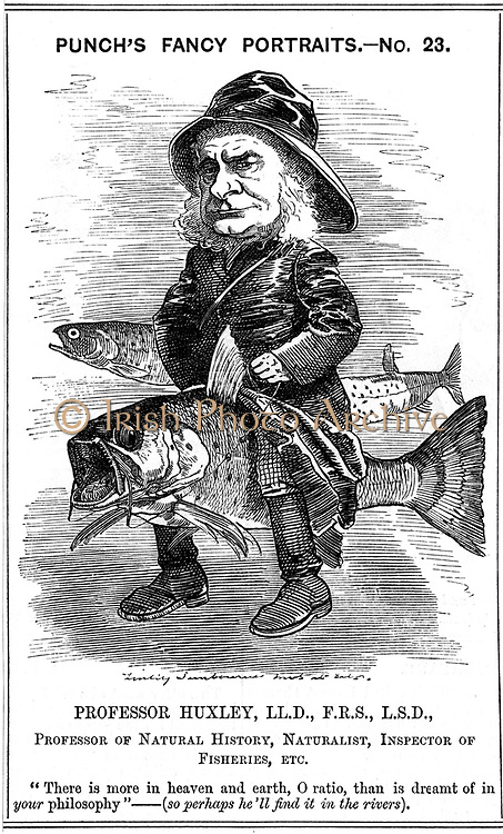 Thomas Henry Huxley (1825-1895) at the time he was Inspector of Fisheries (1881-85). Cartoon by Edward Linley Sambourne in the Fancy Portrait Series from 'Punch', London, 19 March 1881