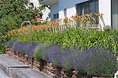 Natural Garden 904