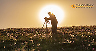 Photographer backlit by rising sun in filed of wildflowers near East Glacier, Montna, USA