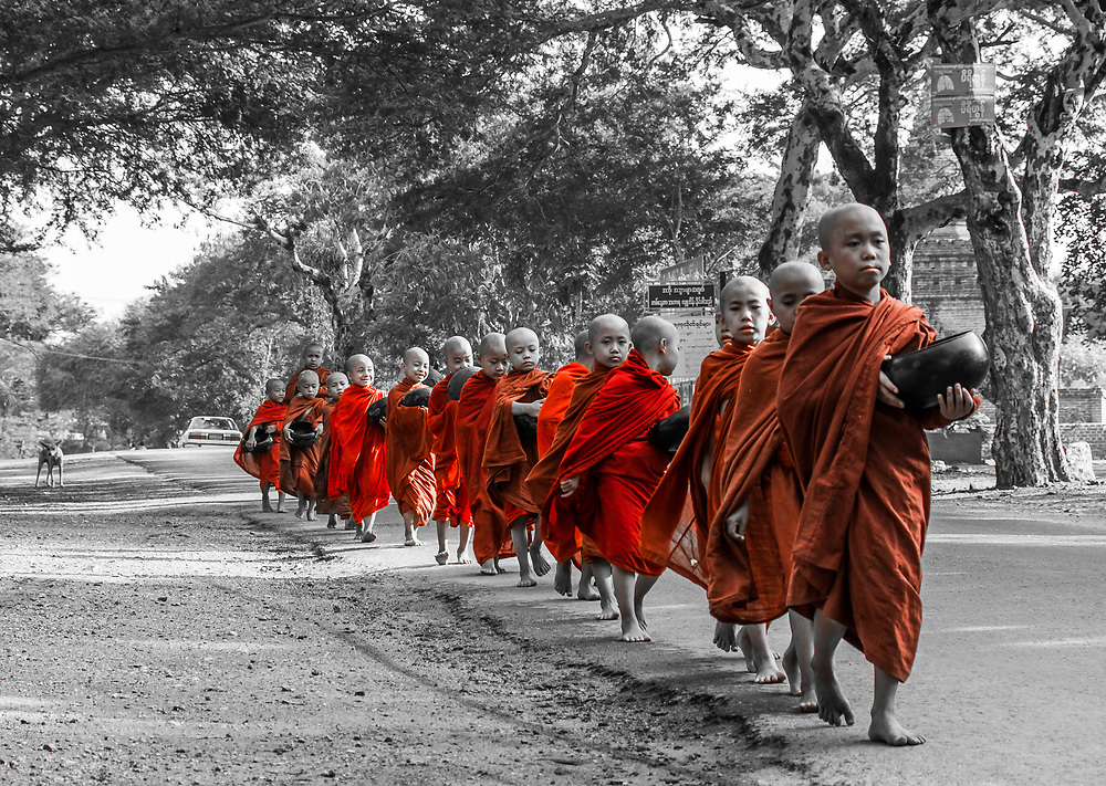 Young monks returning from morning alms