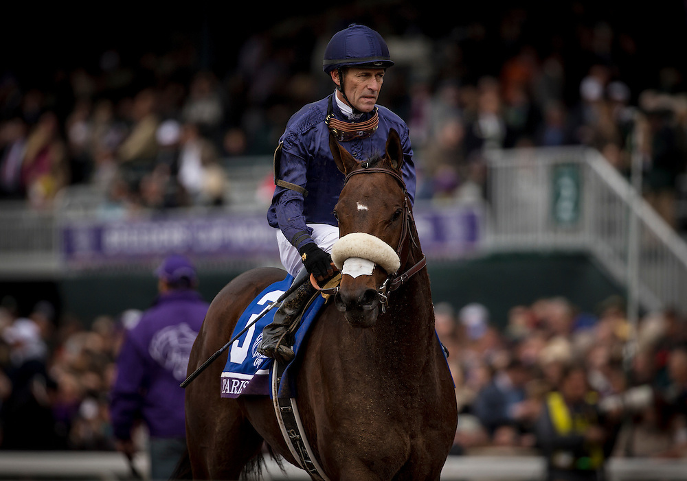 October 31, 2015:  Taris with Gary Stevens up races in the Breeders' Cup Filly and MareSprint at Keeneland Race Track in Lexington, Kentucky. Evers/ESW/CSM