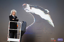 © Licensed to London News Pictures. 19/09/2012. LONDON, UK. Former Queen guitarist Brian May is seen next to a poster in West London today (19/09/12) denouncing a planned badger cull set to take place in England.  The cull, set to take place in England, will allow licence holders to kill up to 70% of the badgers on their land as a measure to stop the spread of bovine TB, a disease that some badgers can carry. Photo credit: Matt Cetti-Roberts/LNP