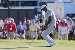 September 21, 2018 - Atlanta, Georgia, United States - Tiger Woods reacts after missing a putt on the 18th green during the second round of the 2018 TOUR Championship. (Credit Image: © Debby Wong/ZUMA Wire)