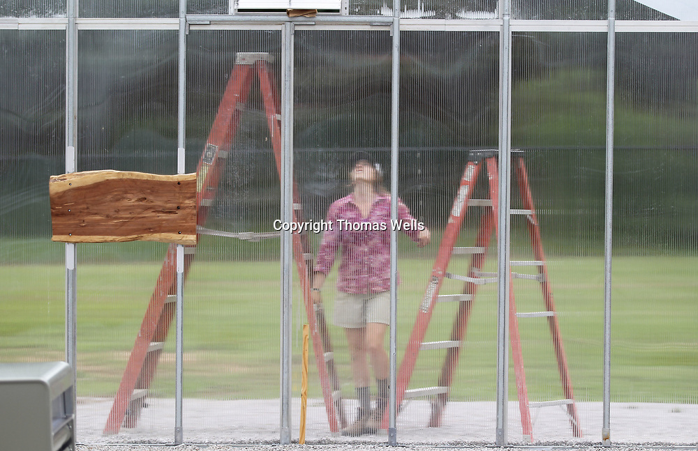 Amanda Huels tries to figure out which ladder to use to reach the roofline of the new greenhouse under construction at Lawndale Elementary School.