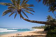 Couple on beach, Sunset Beach, North Shore, Oahu, Hawaii