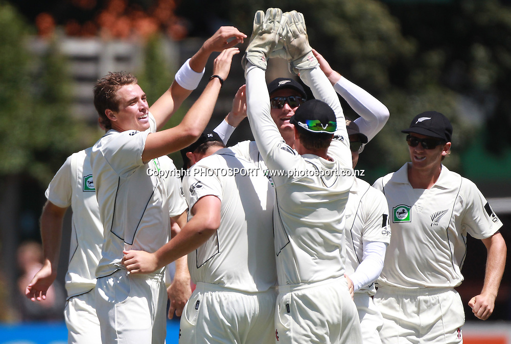 New Zealand bowler Tim Southee celebrates the dismissal of Mohammad Hafeez on Day 2 of the 2nd test match.  New Zealand Black Caps v Pakistan, Test Match Cricket. Basin Reserve, Wellington, New Zealand. Sunday 16 January 2011. Photo: Andrew Cornaga/photosport.co.nz