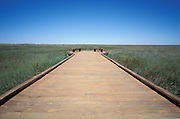 Wooden Walkway to view Prairie Grass in the Badlands
