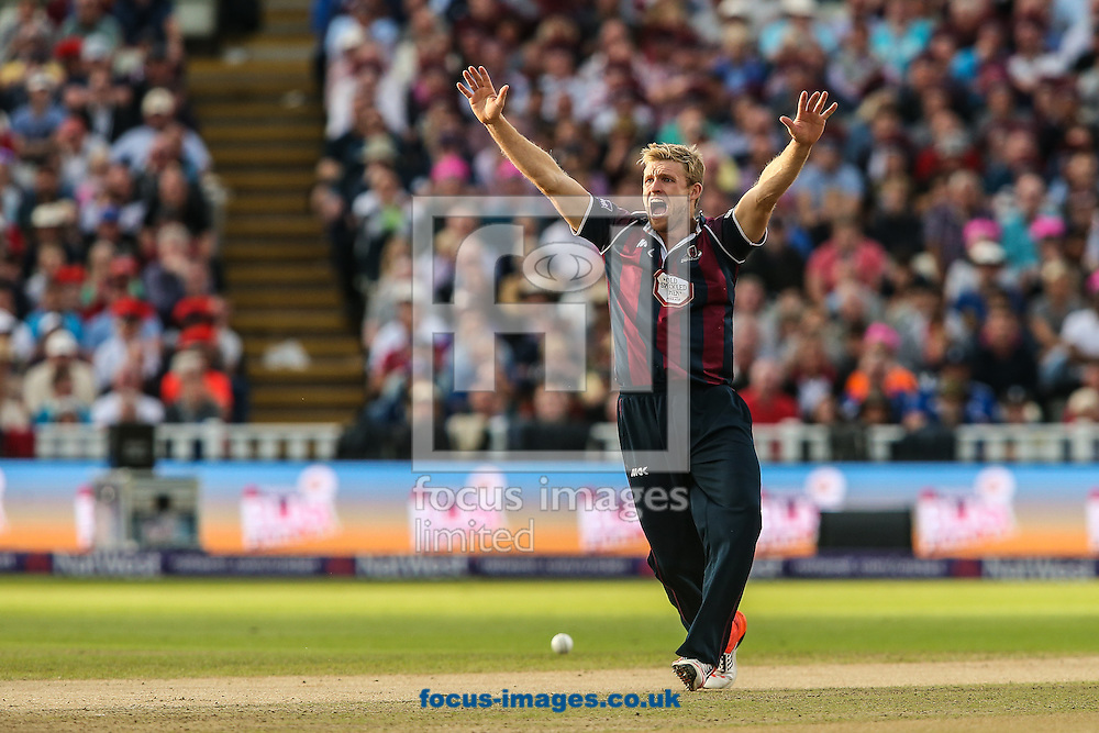 David Willey of Northants Steelbacks  appeals during the Natwest T20 Blast Final at Edgbaston, Birmingham<br /> Picture by Andy Kearns/Focus Images Ltd 0781 864 4264<br /> 29/08/2015
