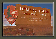 Petrified Forest National Park Magnets