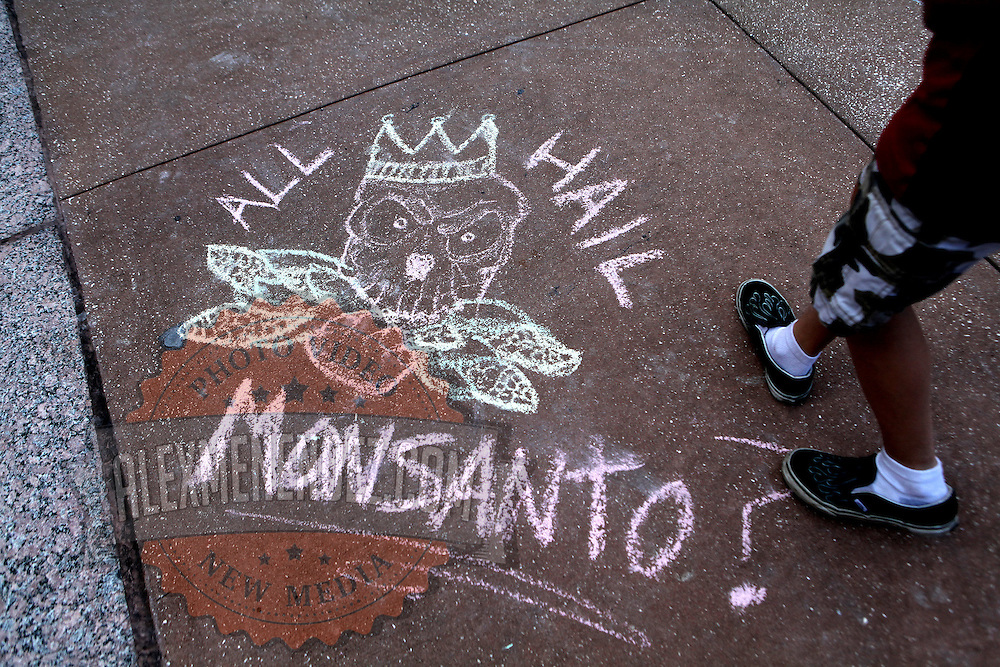 "Activists take part in a rally on the steps of city hall in downtown Orlando, Florida on Saturday, May 5, 2013. The protesters gathered to support a global protest named  ""March Against Monsanto,"" demanding a stop to the use of agrochemicals and the production of genetically modified food, which according to them has harmful health effects, causing cancer, infertility and other diseases. Marches and rallies against seed giant Monsanto were held across the U.S. and in dozens of other countries. (AP Photo/Alex Menendez)"