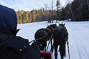 Pair of draft horses pull sleigh along scenic route at base of Gunstock Mountain