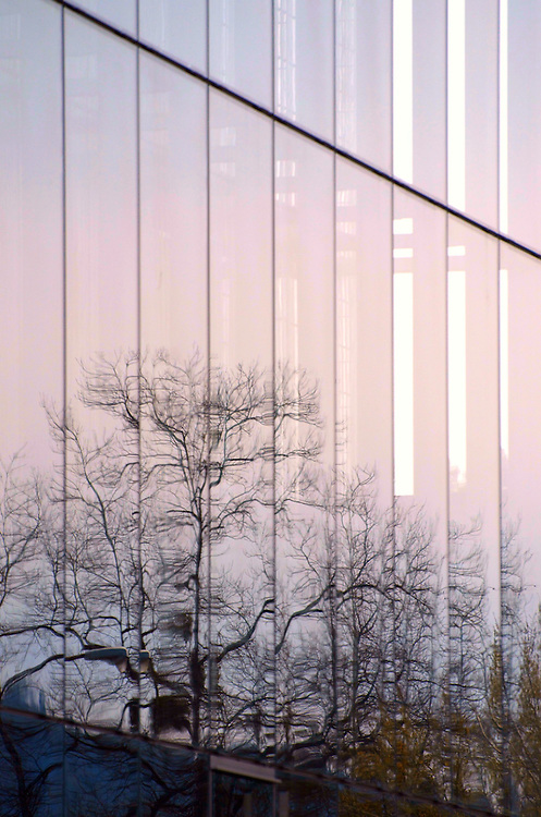 Trees reflected in the glass walls of the Jaqua Center at the University of Oregon