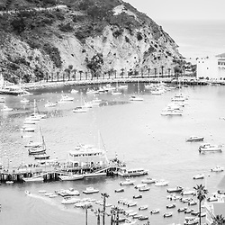 Avalon California Catalina Island panoramic picture in black and white. Santa Catalina Island Avalon Bay from above with the Avalon Casino, Avalon Pier, Holly Hill House, and the Avalon waterfront along the Pacific Ocean.