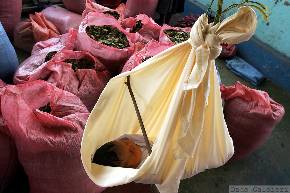 A baby hangs from the ceiling of a coca market while bags of dried coca leaves wait to be bought and load to Cochabamba in Villa 14 de Septiembre, Chapare, Bolivia on January 2006.(Dado Galdieri)
