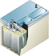 A vector illustration of wet cell battery cutaway
