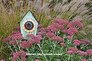 63821-22407 Birdhouse in garden with Autumn Joy Stonecrop (Sedum spectabile 'Autumn Joy') and Fountain Grass (Pennisetum setaceum) Marion Co., IL