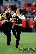 November 23, 2012: CU Buffalo Cheerleaders during the NCAA Football game between the Utah Utes and the Colorado Buffaloes at Folsom Field in Boulder Colorado