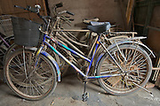 Old bikes resting in a traditional Hutong near the Lama Temple Subway Station - Old Beijing Bike Culture -- 2011 Tour of Beijing Scouting Photos