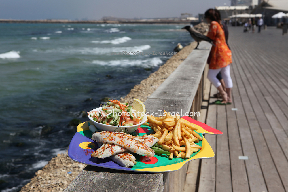 A plate of Fish and Chips and salad The mediterranean sea as a background