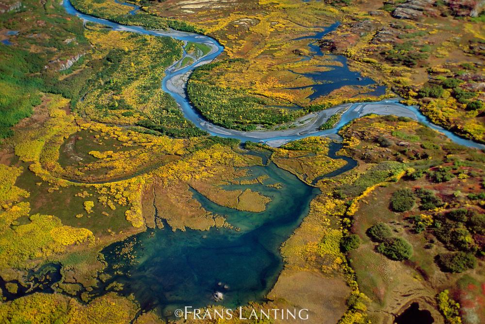 Wetlands (aerial), Tana Valley, Wrangell-St. Elias National Park, Alaska