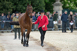 Cook Kristina, (GBR), De Novo News<br /> First Horse Inspection - Mitsubishi Motors Badminton Horse Trials <br /> Badminton 2015