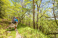 Hiker on Hickory Ridge trail in the Cohutta Wilderness, Chattahoochee National Forest