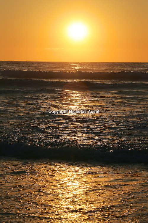 Daybreak delivers a golden reflection across Tamarama Beach