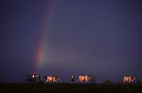 rainbow in Burma - Photograph by Owen Franken