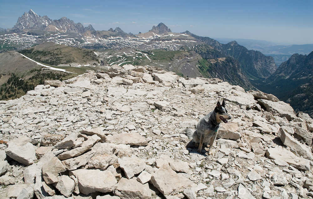 The 10,966-foot Mount Bannon in the Jedediah Smith Wilderness offers sweeping views of both Teton peaks and the deep floor of Death Canyon.