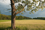Dramatic clouds remain after a late afternoon storm, over Appleton Farms, Topsfield, MA