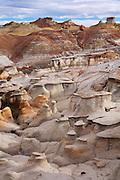 Bisit / De-Na-Zin Wilderness Area near Farmington, New Mexico.